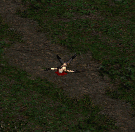 A dead necromancer from diablo 2 - the harsh world of PVP.